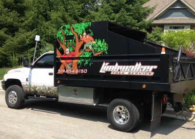 london tree services limbwalker (265)